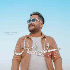 دانلود آهنگ مجید حسینی به نام دل ای دل با کیفیت بالا از سایت اهنگ های تاریخ ما