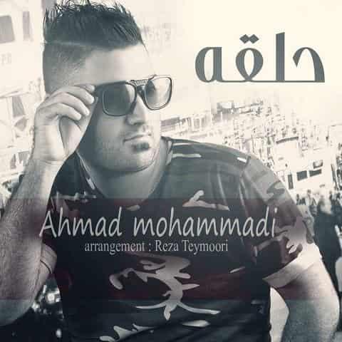 احمد محمدی حلقه