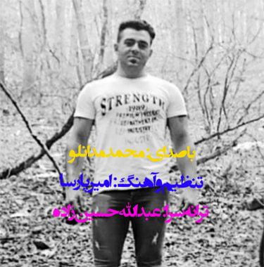 محمد مدانلو دتر