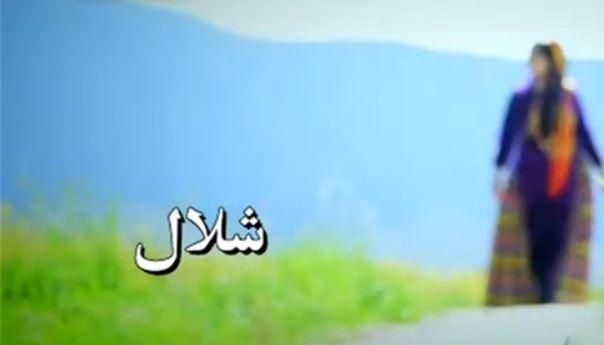 حسام هاشمی شلال